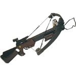 Arbalète à poulies, crosse en bois - 250 Lbs.