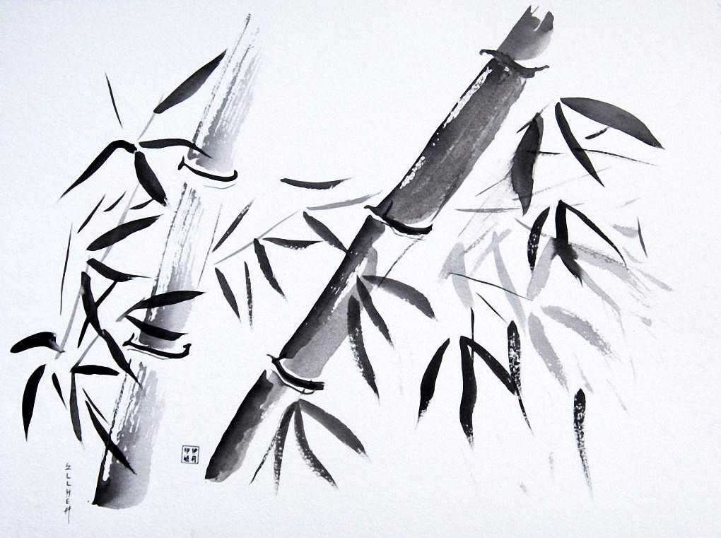 Aquarelle Bambous de la Chance