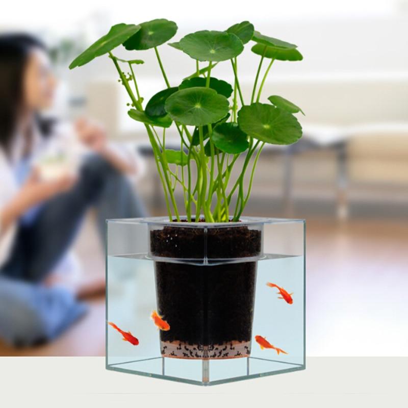 Pot De Fleur Décoratif transparent