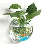Plante-en-Pot-Mur-Mont-Date-Suspendus-D-cor-Bulle-Bol-Fleurs-Fish-Tank-D-coration