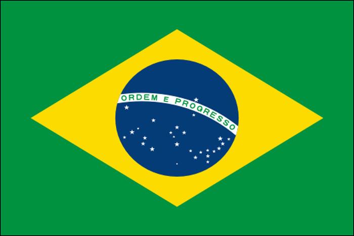 Drapeau du Brésil en tissu