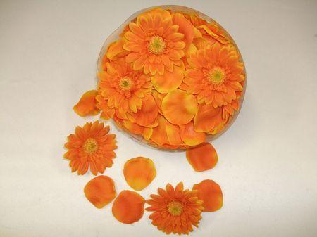Boite Pétales Et Gerberas Oranges