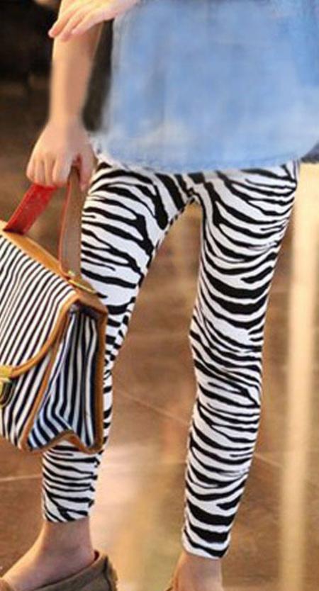 leggin-zebre