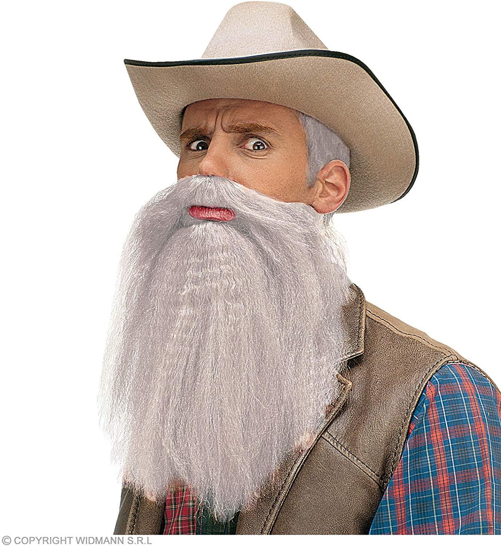 Barbe et moustaches grises avec lèvres