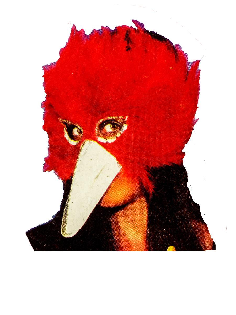 Masque d\'oiseau en plumes rouges