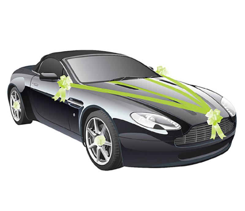 Kit décoration voiture vert anis