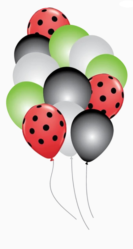 12 BALLONS COCCINELLE