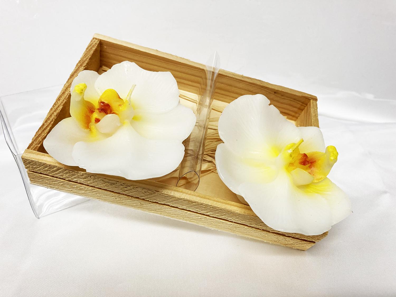 2 bougies orchidée