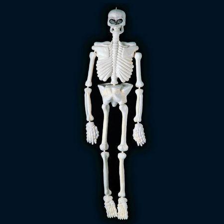 Squelette Plastique 152Cm