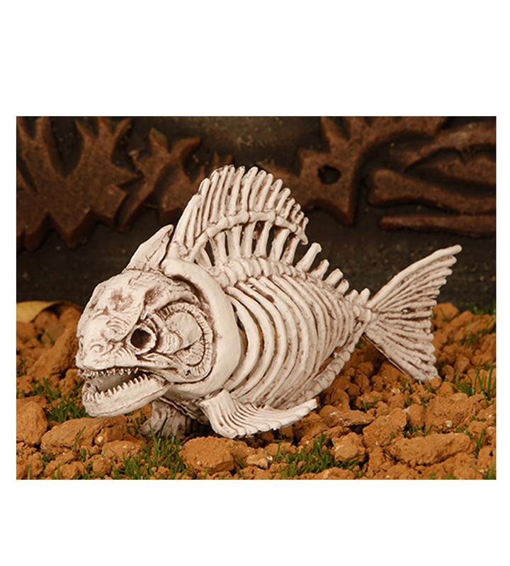 Squelette de piranha