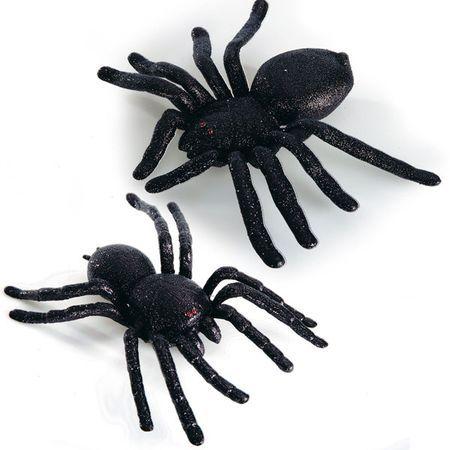 Araignée Pailletée