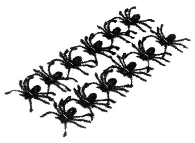 12 araignées