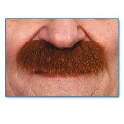 Moustache Brosse Rousse