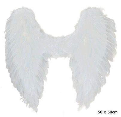 Ailes D\'Ange En Plumes Blanches