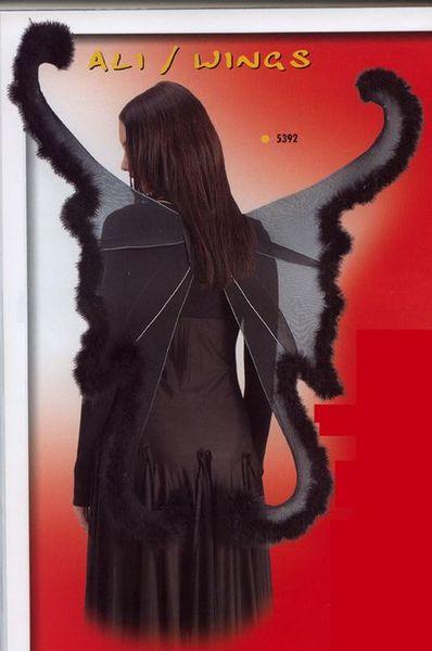 Ailes de Papillon Noires