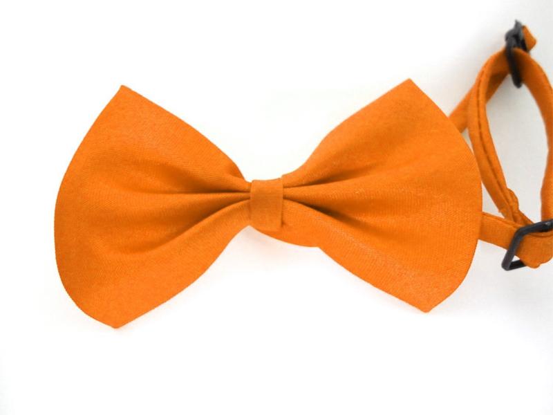 noeud-pap-eco-orange-z