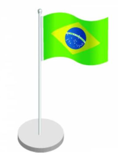 Centre de table Brésil