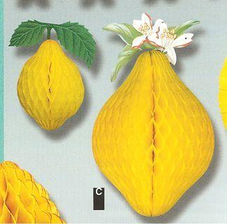 Décor fruit Citron papier Alvéolé