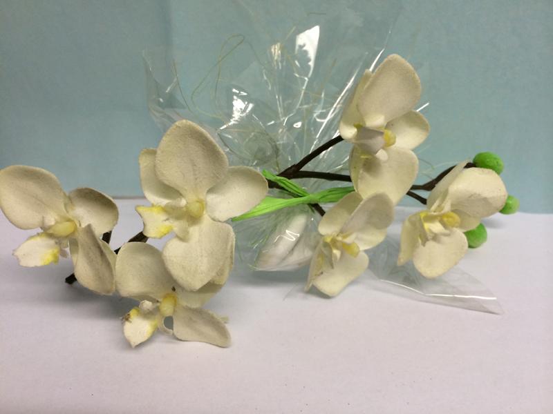 Ballotin dragées orchidées