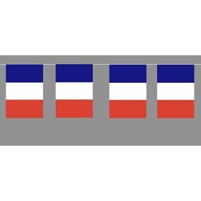 Guirlande Fanions Tricolore
