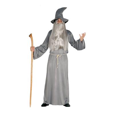 Déguisement mage Merlin