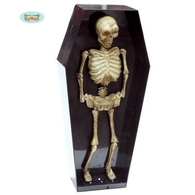 Squelette animé dans son cercueuil