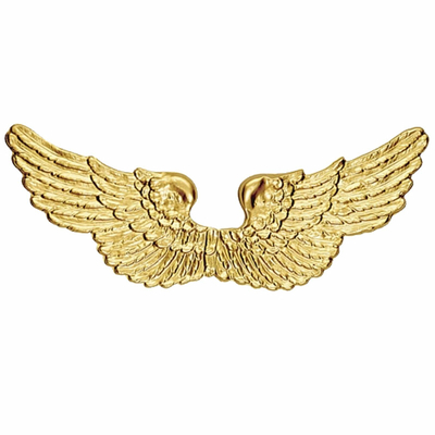 Ailes d'ange en plastique or