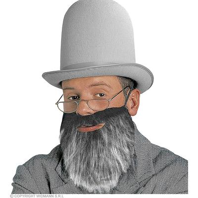 Barbe mi longue grise