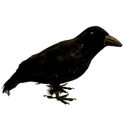 Corbeau en plumes 20 cm