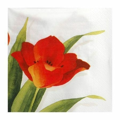 Serviettes Tulipes
