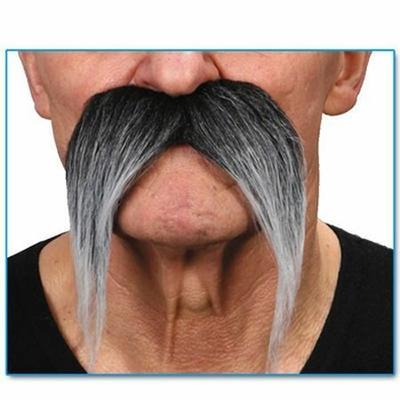 Moustaches Grises