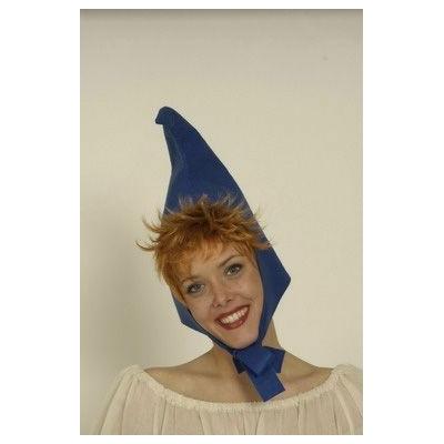 Chapeau de Nain Bleu