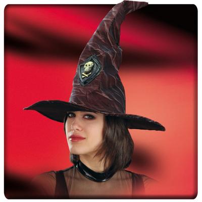 Chapeau de sorcière ou mage