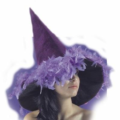 Chapeau Halloween Velours Et Plumes Violettes
