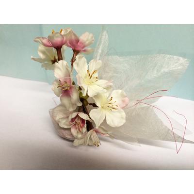 Ballotin dragées fleurs de cerisier