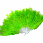 eventail-a-plumes-vertes-