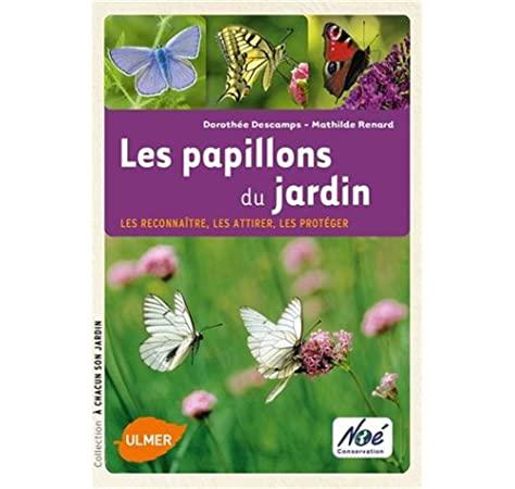 Les papillons du jardin - les reconnaître, les attirer, les protéger