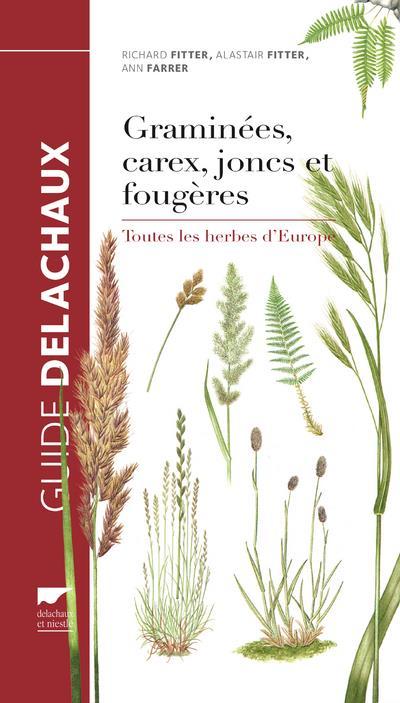 Guide-des-graminees-carex-joncs-et-fougeres-cover