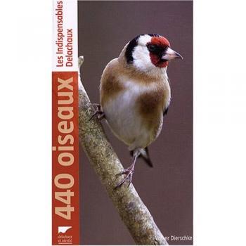 440_oiseaux_-z