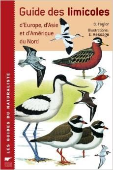 guide-des-limicoles-z