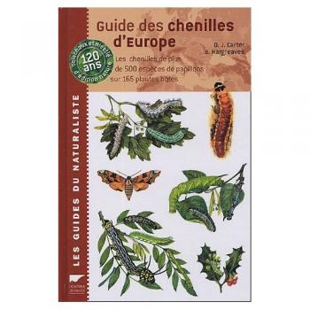 guide_des_chenilles_europe-z