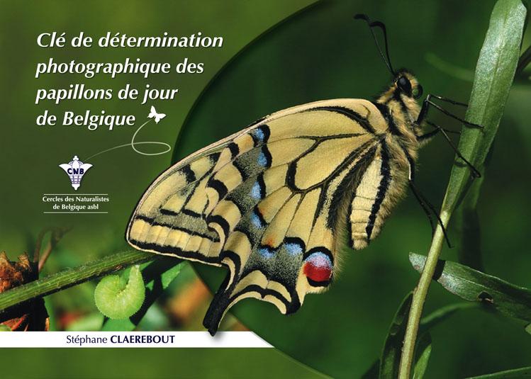 Clé de détermination des papillons