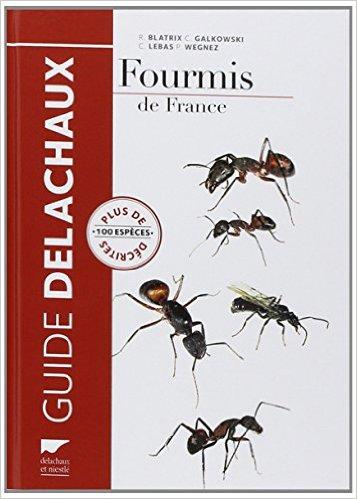 fourmis-de-france-z
