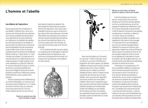 guide-abeille3-z