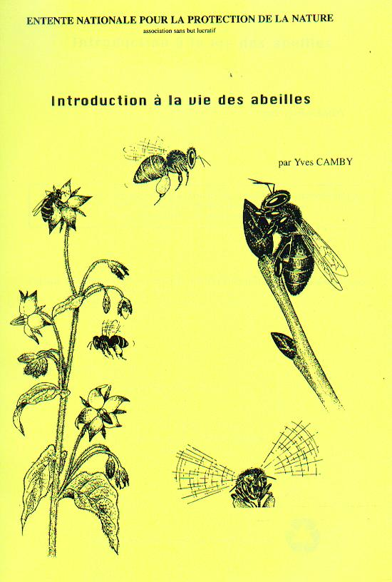 introduction-vie-abeilles-z
