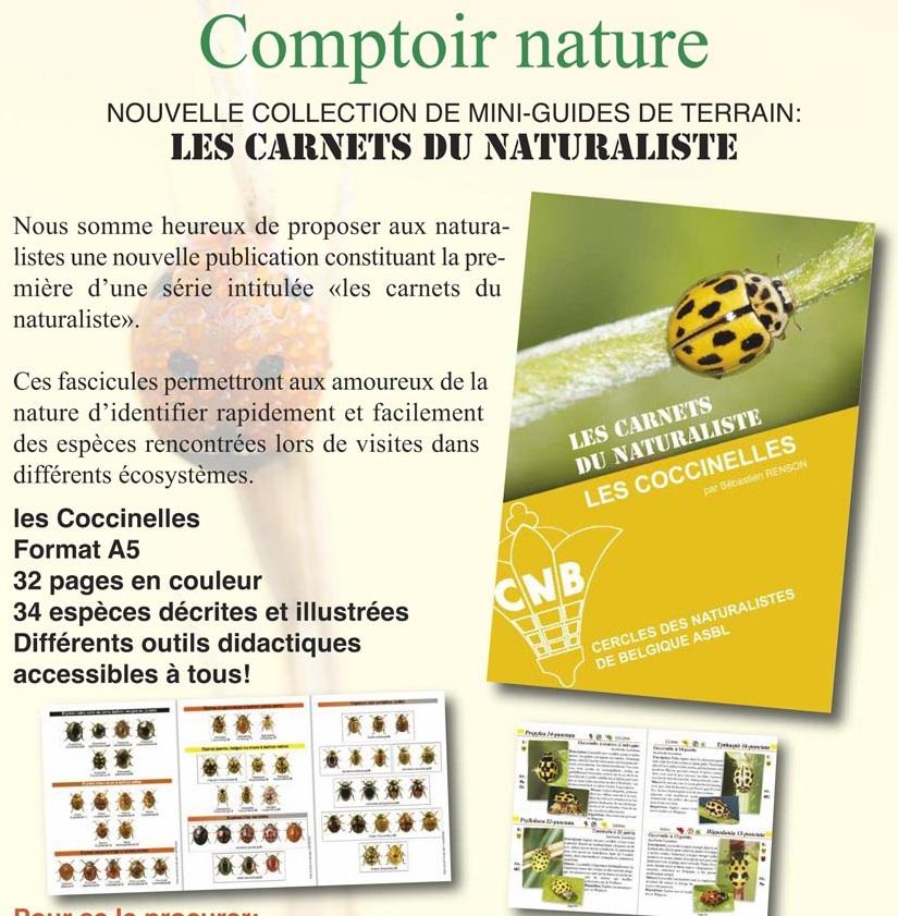 Les carnets du naturaliste : les coccinelles