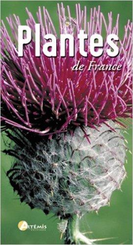 plantes-et-fleurs-france-z