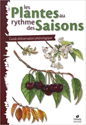 plantes-rythme-des-saisons-z