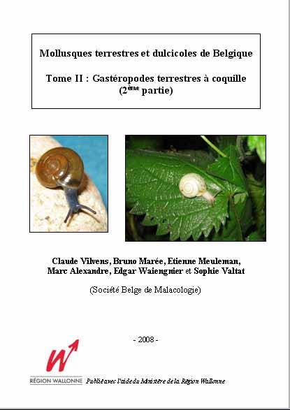 mollusque-terrestres02-z