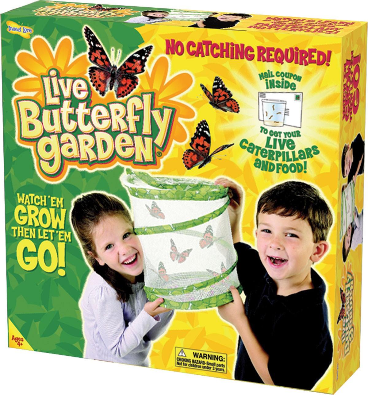 Kit d\'élevage de papillons